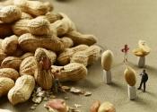minimiam-cacahuettes-2
